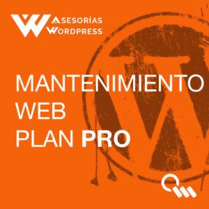 Mantenimiento PRO WordPress